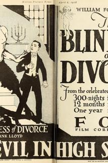 The Blindness of Divorce
