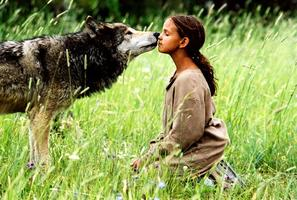 Léto s vlky