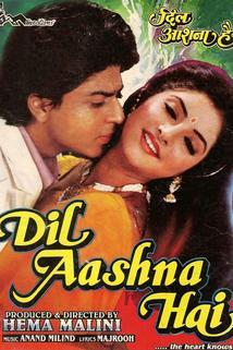 Dil Aashna Hai (...The Heart Knows)  - Dil Aashna Hai (...The Heart Knows)
