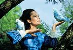 Modrý pták