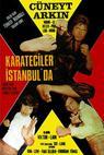 Karateciler istanbulda