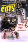 Noche de los mil gatos, La