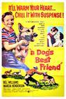 Dog's Best Friend, A