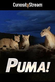 Puma, El
