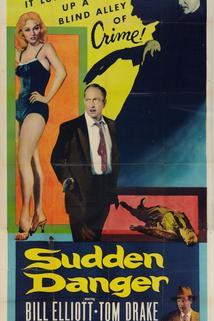 Sudden Danger  - Sudden Danger