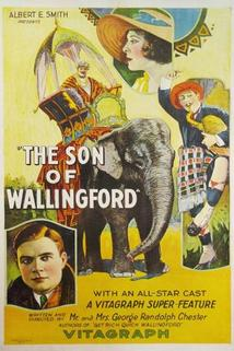The Son of Wallingford