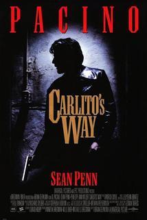 Carlitova cesta