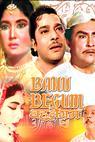 Bahu Begum (1967)