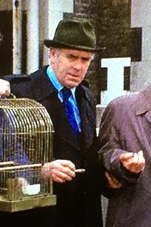 The Birdman of Wormwood Scrubs