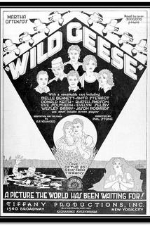 Wild Geese  - Wild Geese