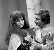 Vojáček a dračí princezna