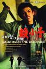 Lai xiao zi (2006)
