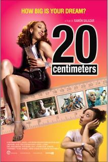 20 centímetros  - 20 centímetros