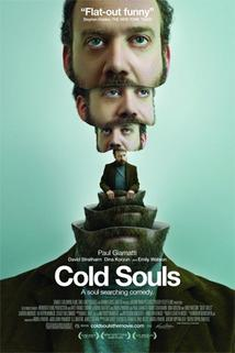 Duše Paula Giamattiho  - Cold Souls