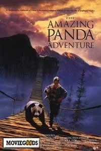 Dobrodružství malé pandy  - Amazing Panda Adventure, The