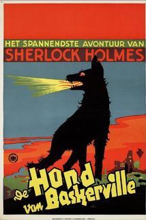 Der Hund von Baskerville  - Der Hund von Baskerville