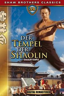 Chrám Shaolinu  - Shao Lin si