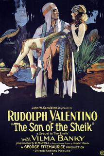 Šejkův syn  - Son of the Sheik, The