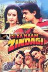 Isi Ka Naam Zindagi (1992)