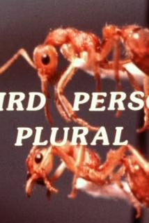 Third Person Plural