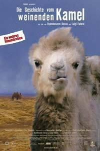 Příběh o uplakaném velbloudovi
