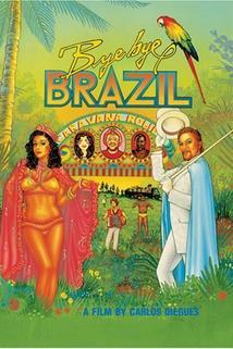 Sbohem, Brazílie!