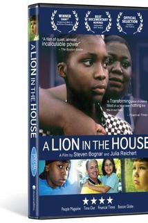 A Lion in the House  - A Lion in the House