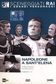 """""""Napoleone a Sant'Elena"""""""