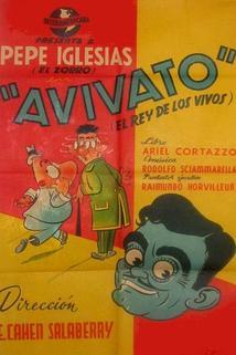 Avivato