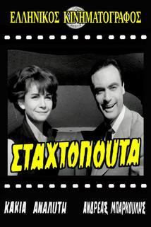 Stahtopouta