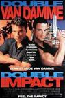 Dvojitý zásah (1991)