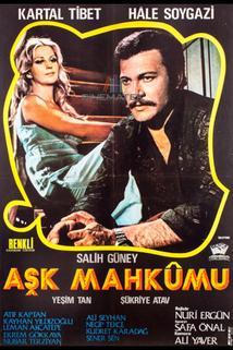 Ask mahkumu