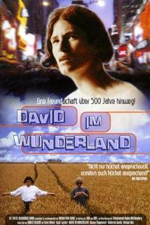David im Wunderland  - David im Wunderland