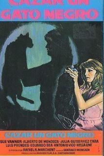 Cazar un gato negro