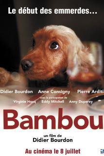 Bambou  - Bambou