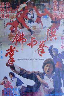 Liu xing fei ying