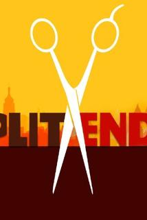"""Split Ends"""