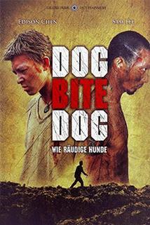 Pes kouše psa