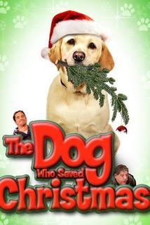 The Dog Who Saved Christmas  - The Dog Who Saved Christmas
