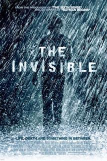 Přehlížený  - Invisible, The