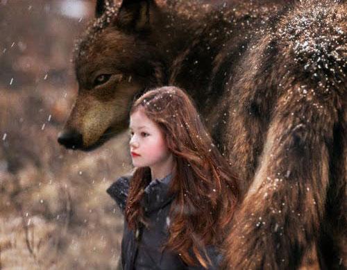 Twilight sága: Rozbřesk - 2. část