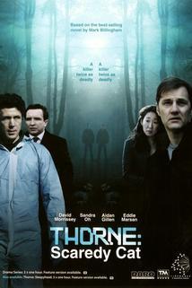 Detektiv Thorne: Nesmělý muž