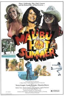 Malibu Hot Summer  - Malibu Hot Summer