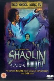Shao Lin zhen gong fu