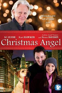 Vánoční anděl