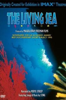 The Living Sea  - The Living Sea