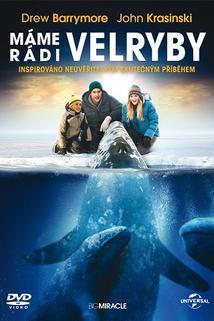Plakát k filmu: Máme rádi velryby