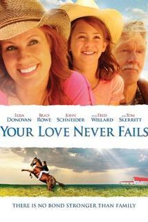 Love Never Fails  - Love Never Fails