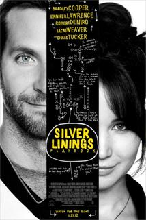 Terapie Láskou  - Silver Linings Playbook