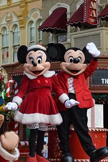 Disney Parks Christmas Parade Special